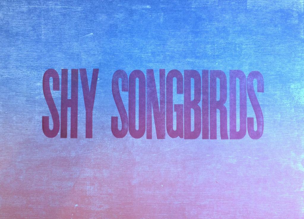 Shy Songbirds by Amos Klausner